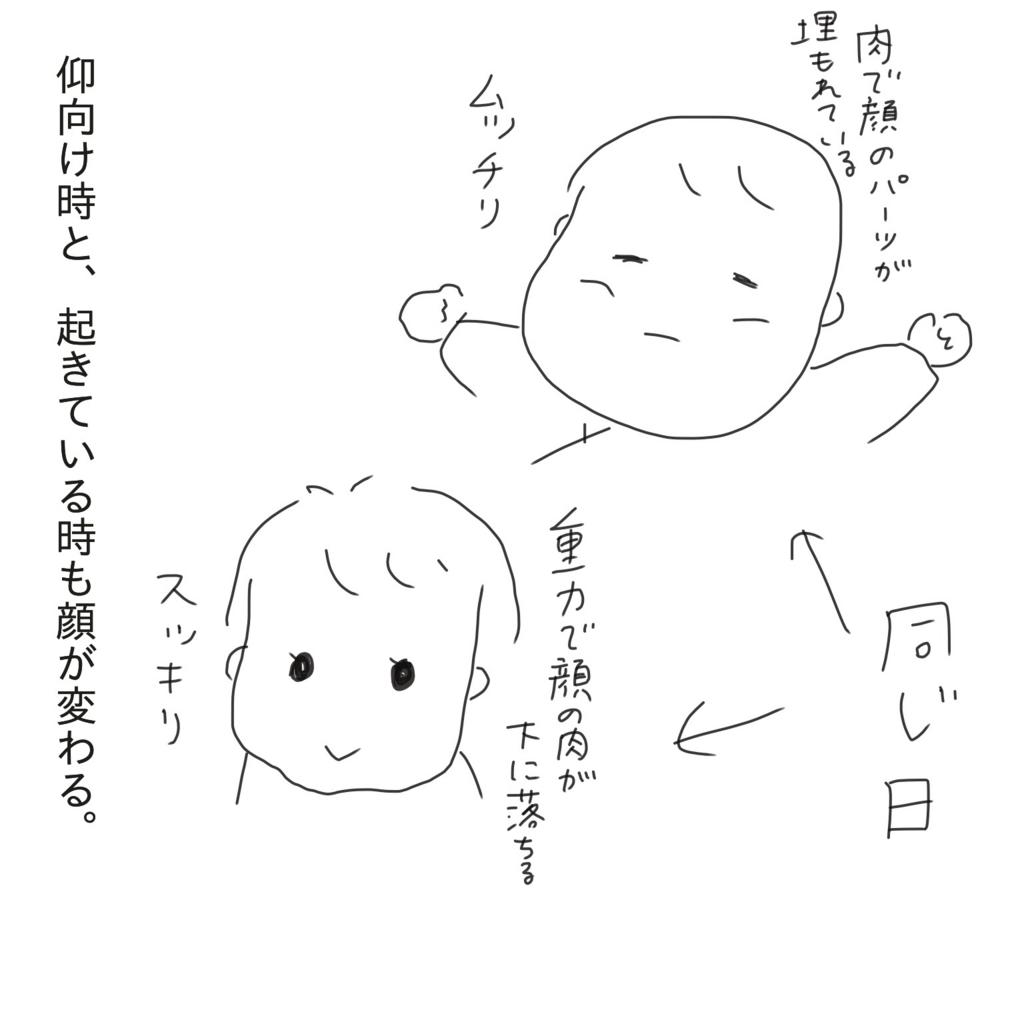 f:id:tarotaroko:20171001172038j:plain