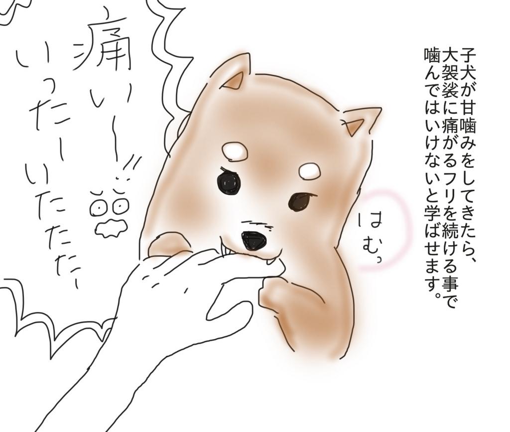 f:id:tarotaroko:20171104171838j:plain