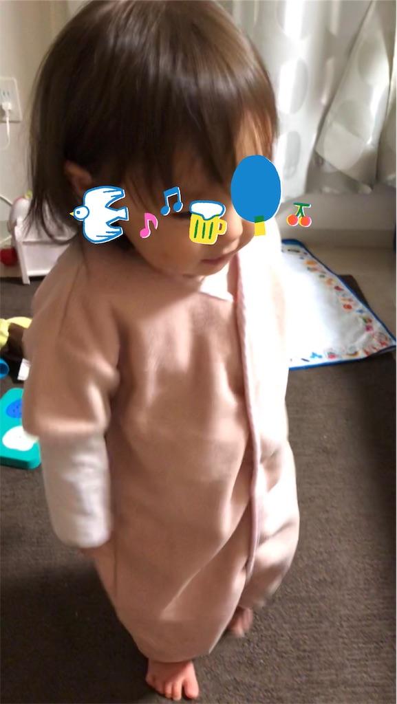 f:id:tarotaroko:20190115232557j:image