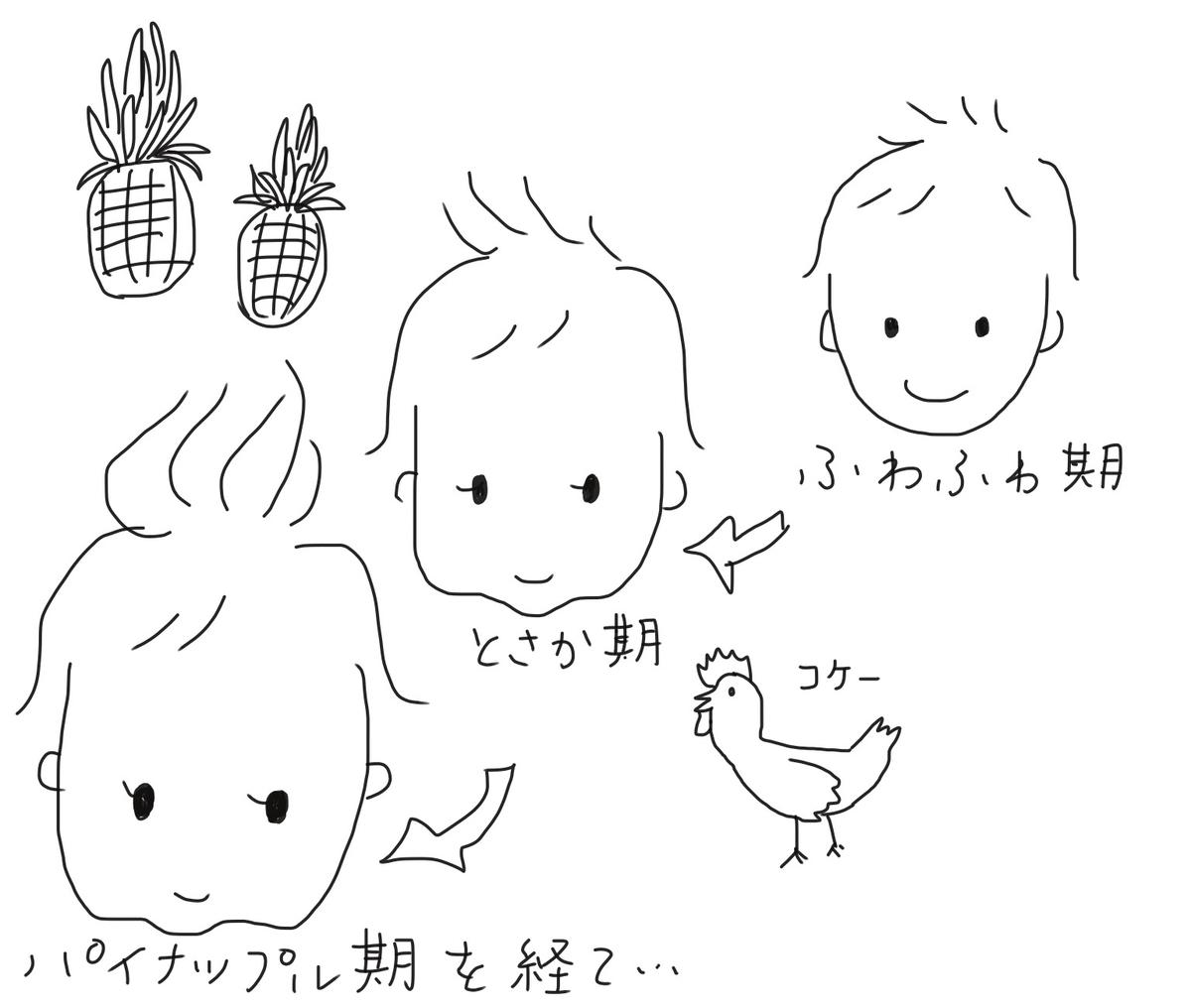 f:id:tarotaroko:20200908223337j:plain