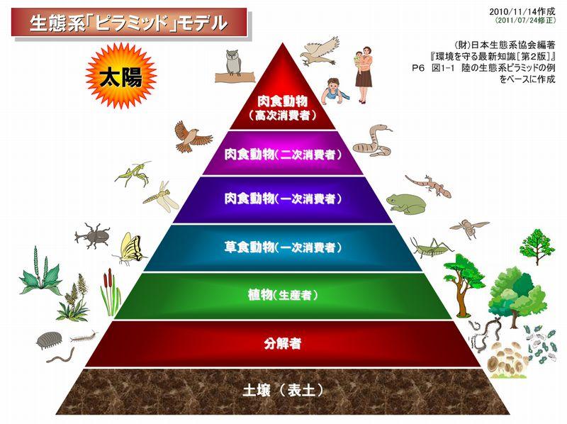 f:id:tarotsakurako:20170227195658j:plain