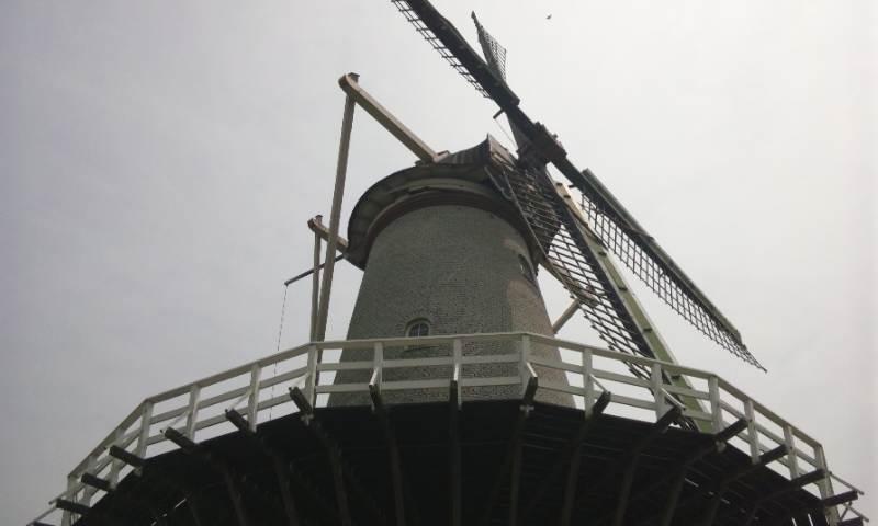 風車の件 完結編 2-1