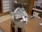 試しに3DSからうpしてみました。 バカ猫その11