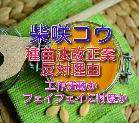 f:id:taroyamada19820721:20210604235130j:plain
