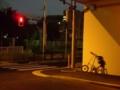 [自転車]今日のSTRIDA