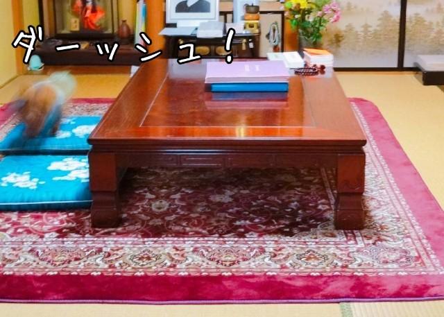 f:id:taruto-rasuku_maaya:20190429203824j:image