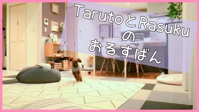 f:id:taruto-rasuku_maaya:20191021072822j:image