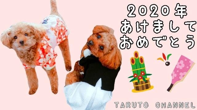 f:id:taruto-rasuku_maaya:20200110205904j:image