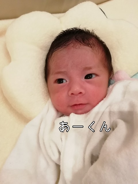 f:id:taruto-rasuku_maaya:20200206201552j:image