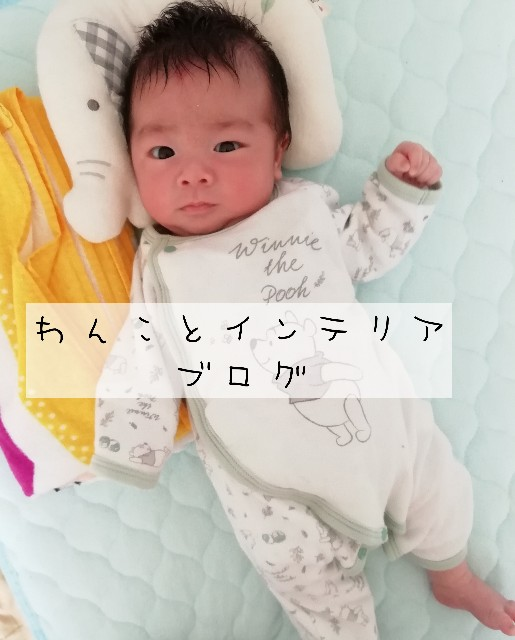 f:id:taruto-rasuku_maaya:20200304210017j:image