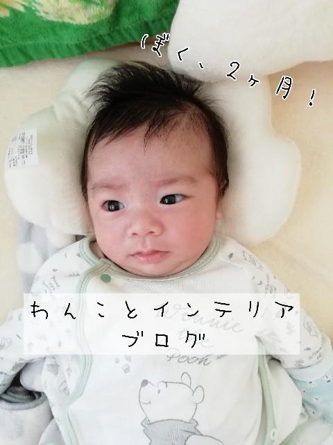 f:id:taruto-rasuku_maaya:20200316230002j:image