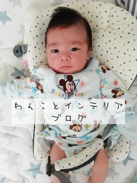 f:id:taruto-rasuku_maaya:20200316230058j:image
