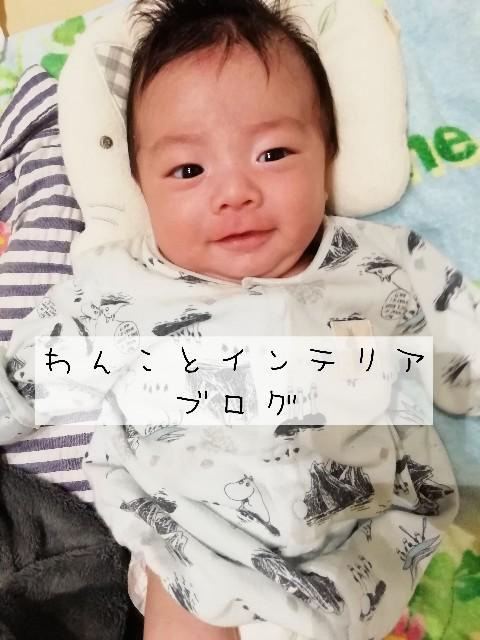 f:id:taruto-rasuku_maaya:20200318004201j:image