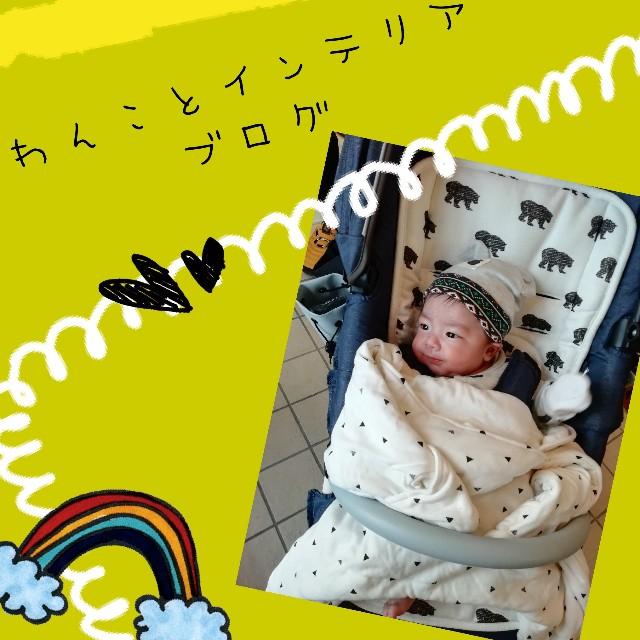 f:id:taruto-rasuku_maaya:20200329205426j:image