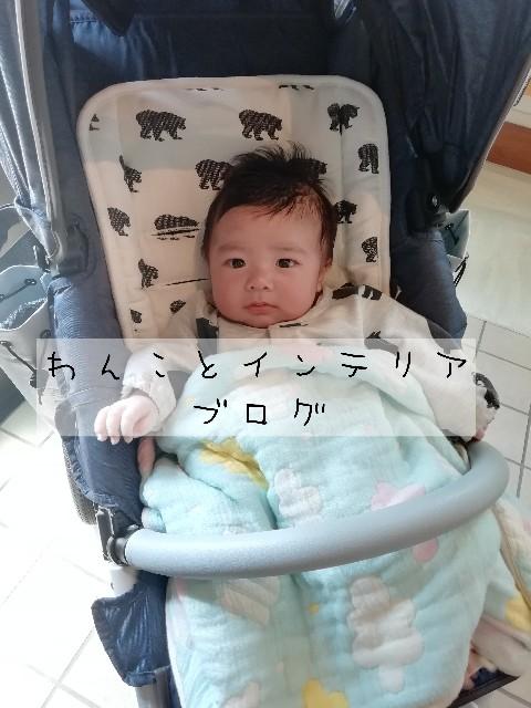 f:id:taruto-rasuku_maaya:20200418013625j:image