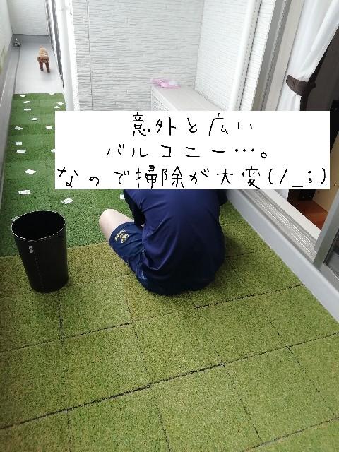 f:id:taruto-rasuku_maaya:20200512224525j:image