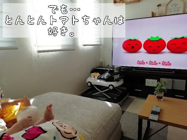 f:id:taruto-rasuku_maaya:20200813000528j:image