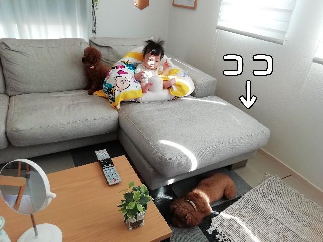 f:id:taruto-rasuku_maaya:20200813230601j:image