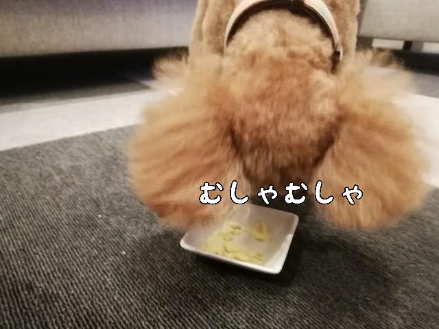 f:id:taruto-rasuku_maaya:20200824195202j:image