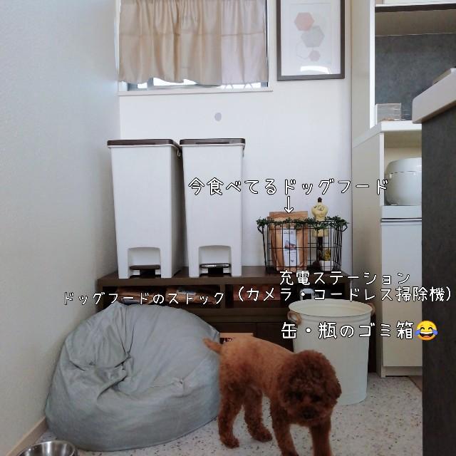 f:id:taruto-rasuku_maaya:20201027155534j:image