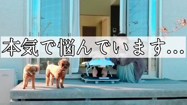 f:id:taruto-rasuku_maaya:20201029215312j:image