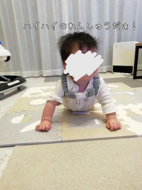 f:id:taruto-rasuku_maaya:20201118004955j:image