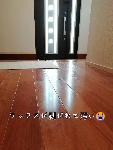 f:id:taruto-rasuku_maaya:20201119223152j:image