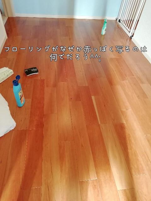 f:id:taruto-rasuku_maaya:20201119233112j:image