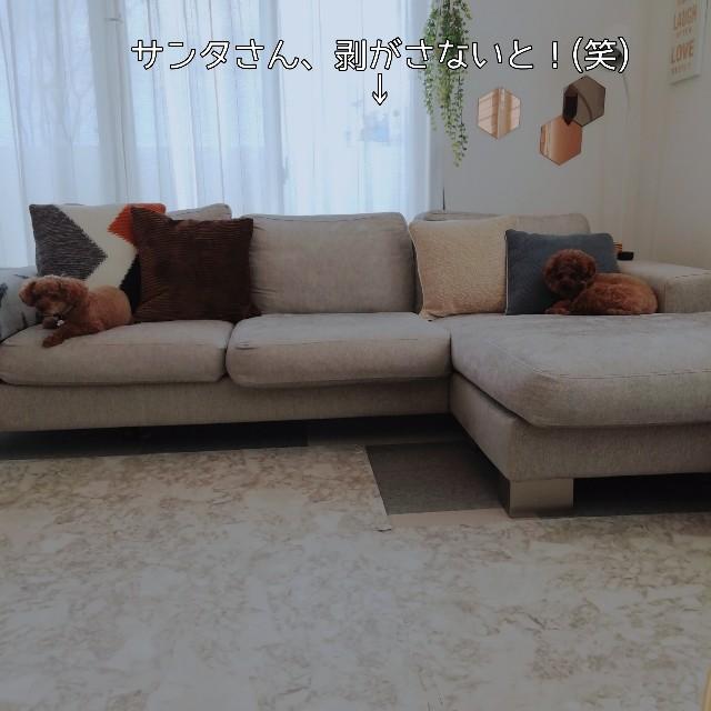 f:id:taruto-rasuku_maaya:20201230231046j:image