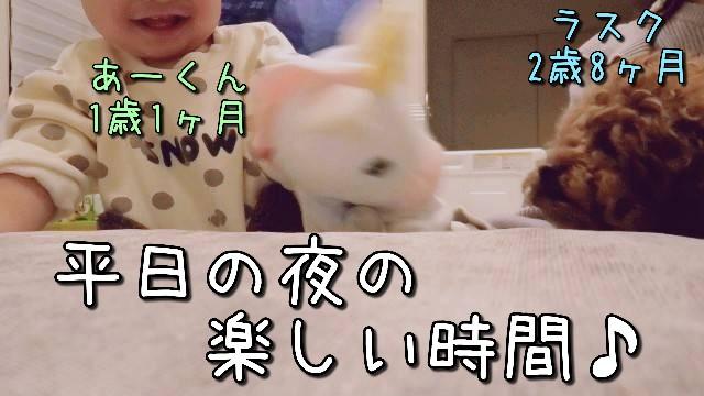 f:id:taruto-rasuku_maaya:20210308005931j:image