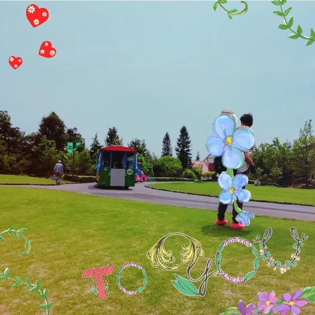 f:id:taruto-rasuku_maaya:20210530000447j:image