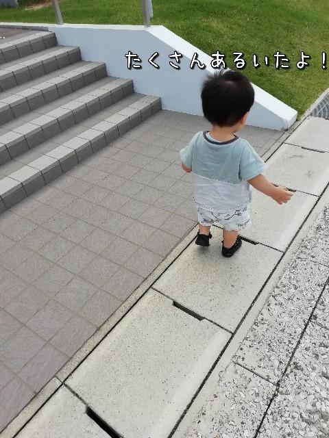 f:id:taruto-rasuku_maaya:20210617191706j:image