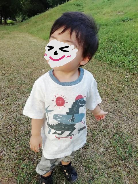 f:id:taruto-rasuku_maaya:20210803225551j:image