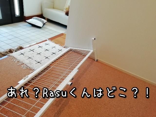 f:id:taruto-rasuku_maaya:20210810221818j:image