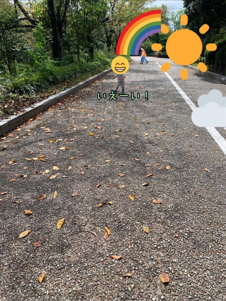 f:id:taruto-rasuku_maaya:20210908111235j:image