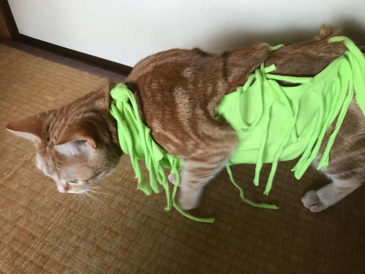 猫 術後服 手作り
