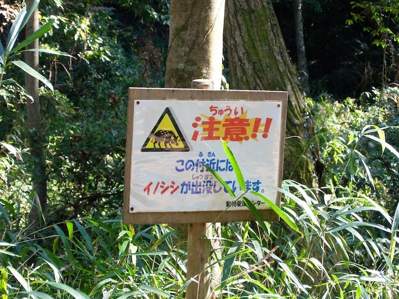 f:id:tasunosuke:20180106195528j:plain
