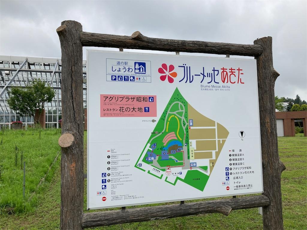 f:id:tateisu19:20200816080123j:image