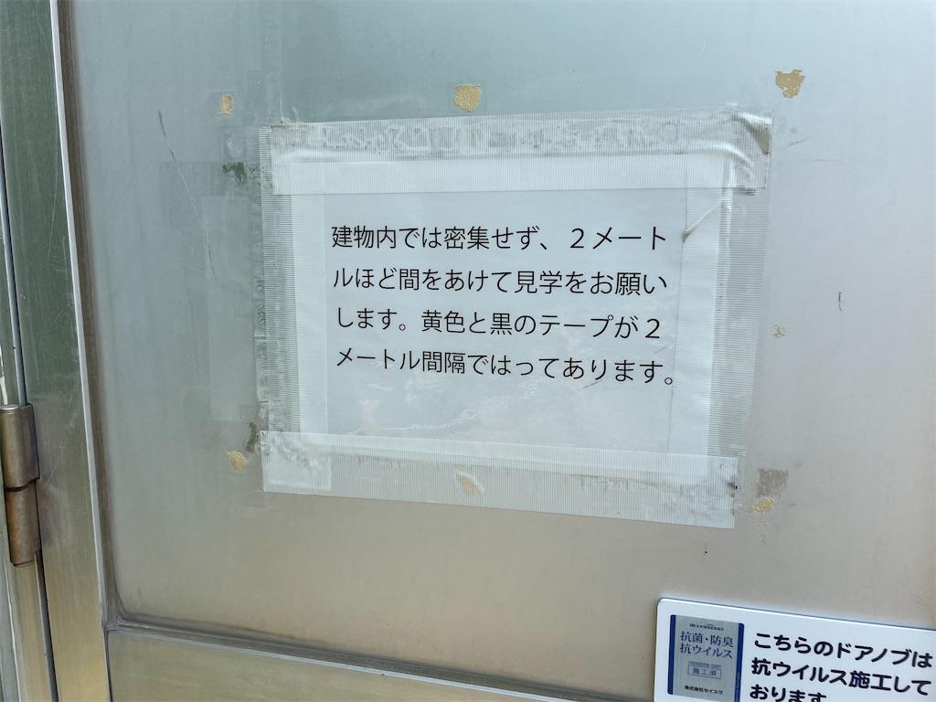 f:id:tateisu19:20210710175136j:image