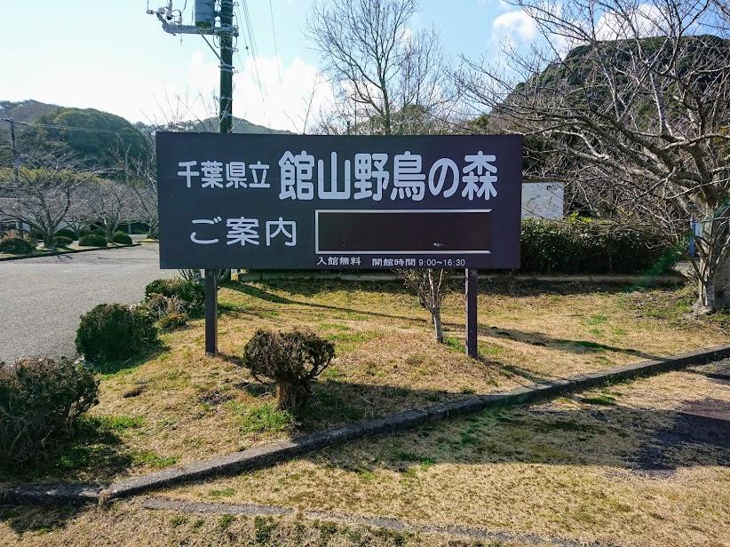 f:id:tateyama-lohas:20190309165158j:plain