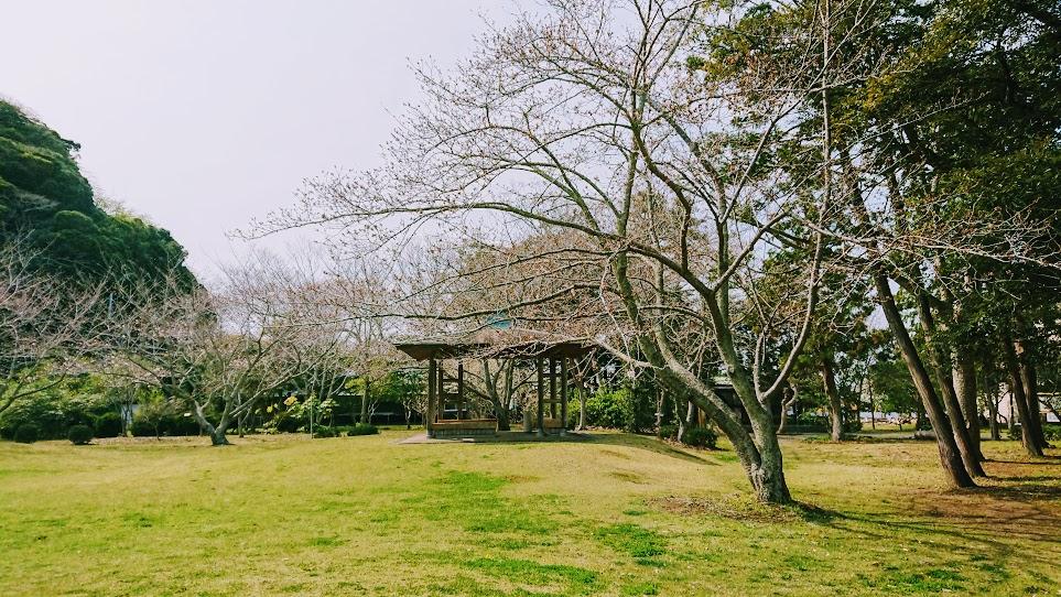 f:id:tateyama-lohas:20190327160854j:plain
