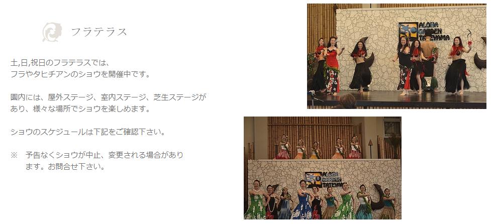 f:id:tateyama-lohas:20190406171652p:plain