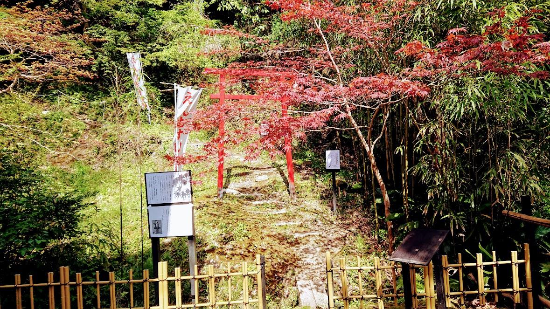f:id:tateyama-lohas:20190421182639j:plain
