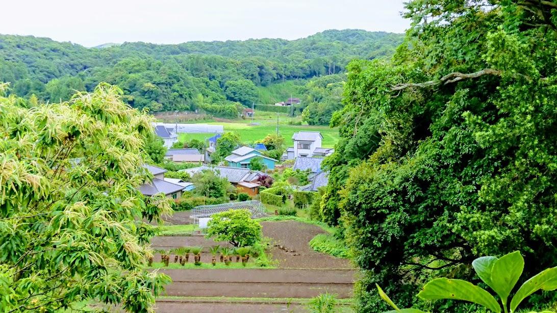 f:id:tateyama-lohas:20190610155220j:plain