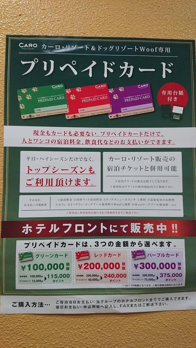 f:id:tateyamadiana:20200108064329j:plain