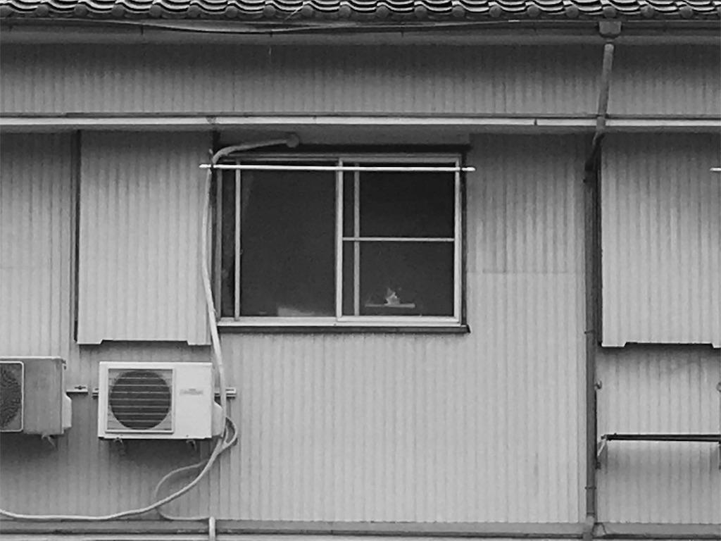 f:id:tatsuekobayashi:20170930130145j:image