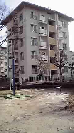 f:id:tatsuji0221:20110211231639j:image