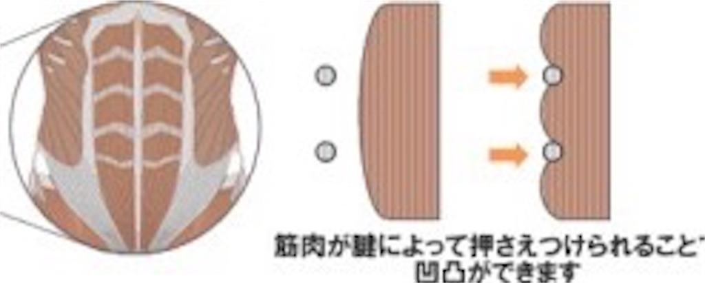 f:id:tatsuki52510:20181006202504j:image