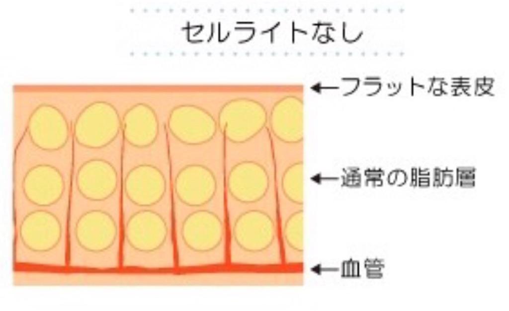 f:id:tatsuki52510:20181024022910j:image