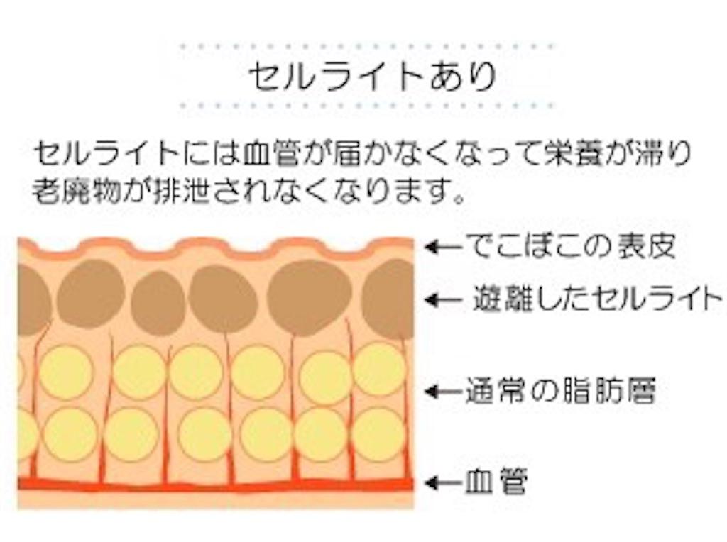 f:id:tatsuki52510:20181024023238j:image